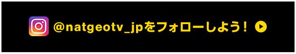 @natgeotv_jpをフォローしよう!
